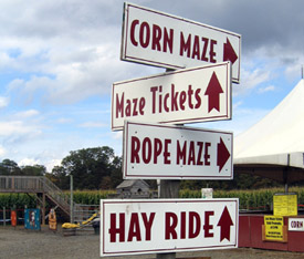 Photo of agritourism signs at a farm - Click to enlarge
