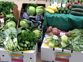 Photo of Consalo produce at Food Bank of South Jersey