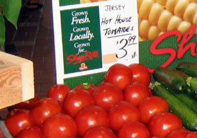 Photo of New Jersey greenhouse tomatoes - Click to enlarge