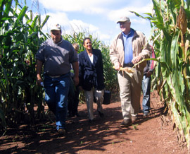 Photo of Rich Norz, Secretary Wells and Secretary Kuperus in the corn maze