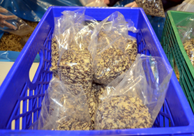 Photo of bags of rice - Click to enlarge
