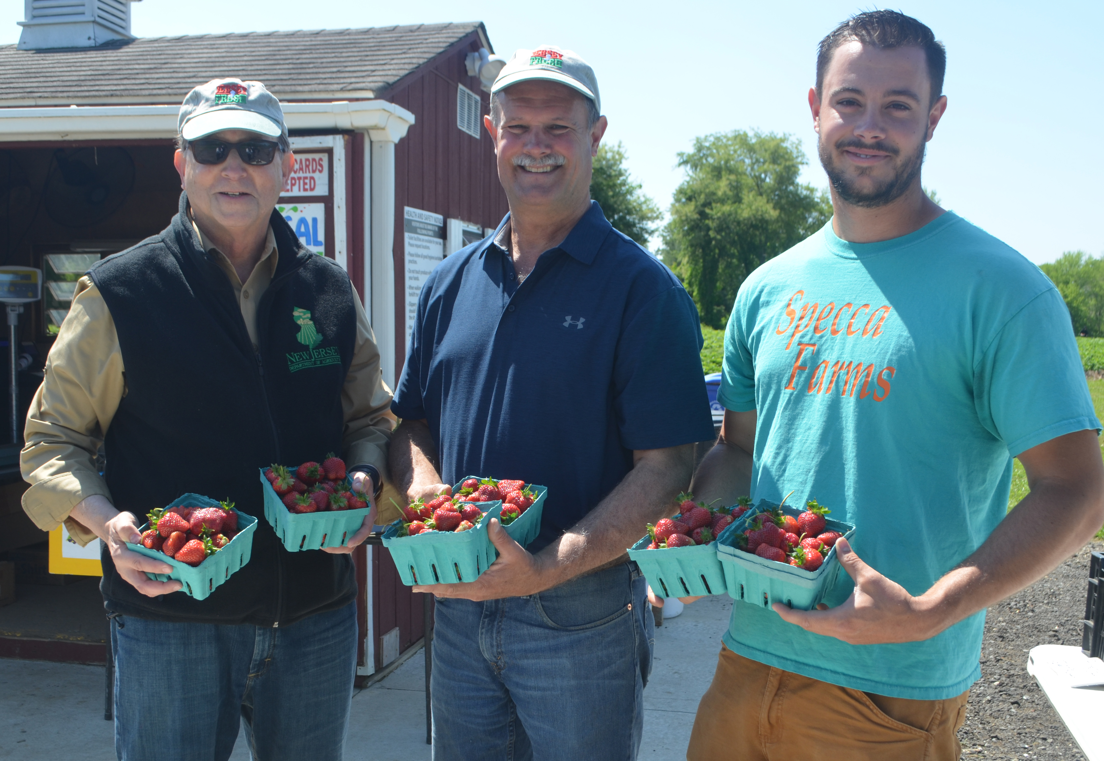 Jersey Fresh Strawberries  - Click to enlarge