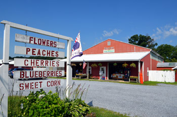 Photo of Walker Brothers Market