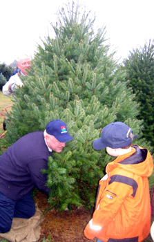 Photo of Secretary Kuperus and Senator Lance cutting down a tree selected by Johnny Wyckoff
