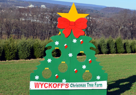 Photo of the Wyckoff sign - Click to enlarge