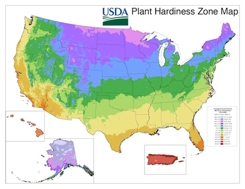 Jersey Grown  Gardener Information