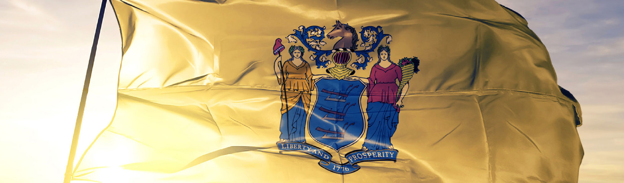 photo: NJ Flag
