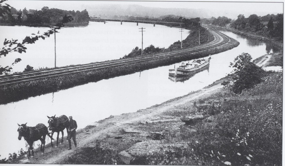 In his book, The Delaware and Raritan Canal: Pictorial History, William J. McKelvey, Jr. notes that while the Delaware and Raritan Canal pioneered the use of steam-powered vessels in America, mule-drawn boats were employed almost until the canal's closure.  Large stables were located at Bordentown and at Griggstown.