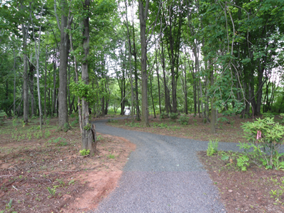 View of a pathway at the sanctuary