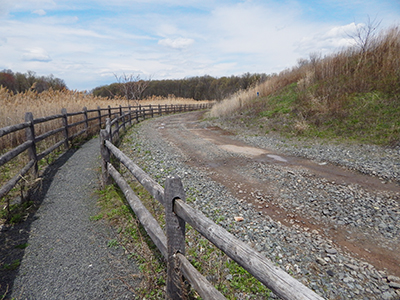 blue gravel on pathway
