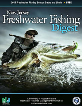 Freshwater fishing nj woods water for New jersey fishing license