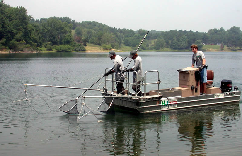 Njdep division of fish wildlife spotlight on round for Nj freshwater fishing license