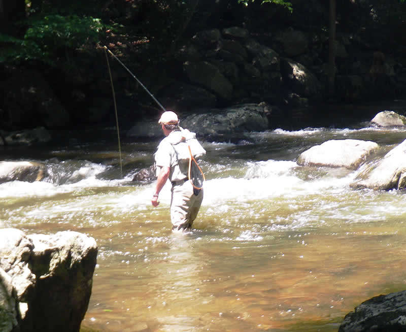 Njdep division of fish wildlife trout fishing information for Trout fishing nj