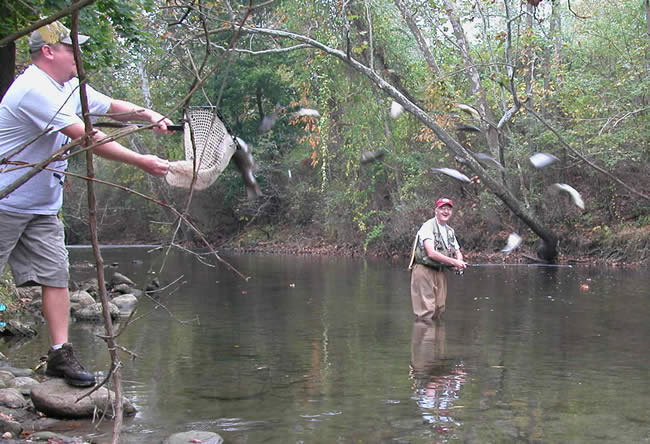 Njdep Division Of Fish Wildlife Fall 2007 Trout Stocking Schedule
