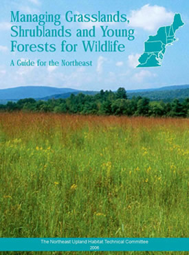 Njdep division of fish wildlife managing grasslands for Mass fish and wildlife