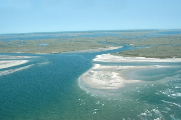 replenishment of beaches and dunes
