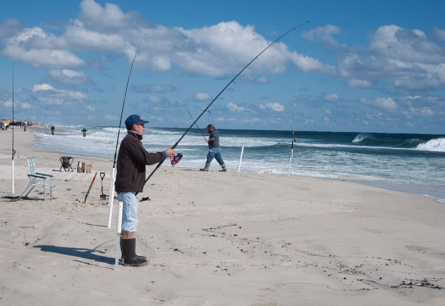 Njdep news release 18 p037 hundreds angling to land for Island beach state park fishing