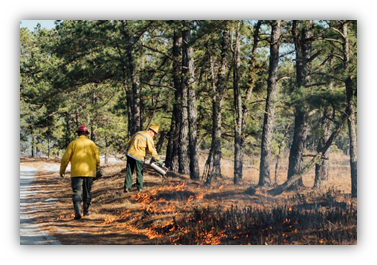 NJDEP - News Release 19/P009 - New Jersey State Forest Fire Service
