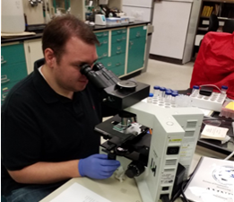 photo: July 23, 2019 HarmfulDEP Division of Science and Research Scientist performing cyanobacteria identification and cell counts. Source: DEP.