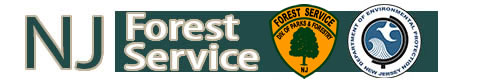 NJ State Forestry Services Logo
