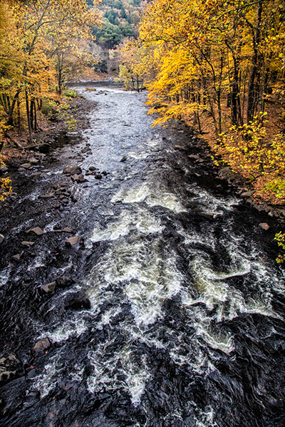 Rapids on the Mongaup in the Fall by Andy Smith.