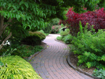 Winding brick path through the Arboretum