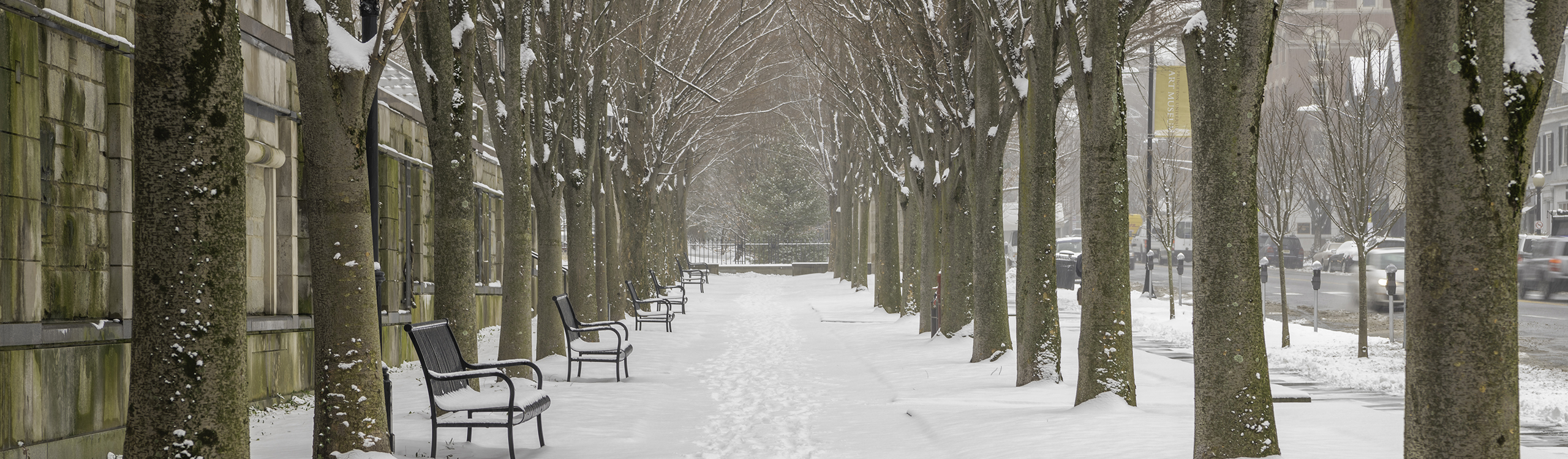 Princeton New Jersey snow covered side walk