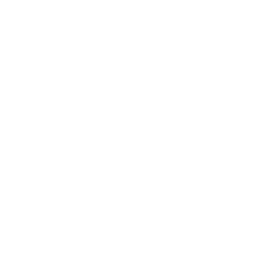 Digital NJ Logo (the letters N and J with the sillouette of the state of New Jersey knocked out)